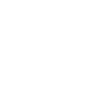 Full-Ace